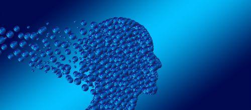 Общее и отличное в теоретическом и практическом аспектах работы/Сферы применения гештальт-терапии